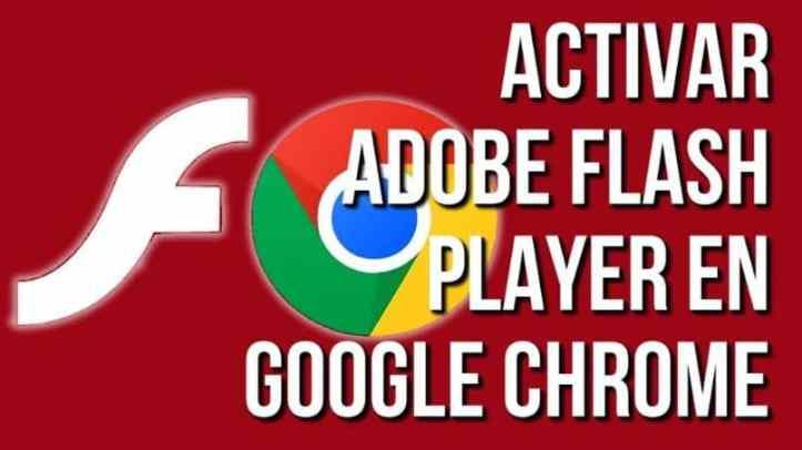 Guía para activar Adobe Flash Player