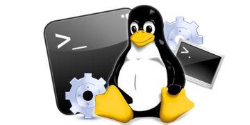 Los comandos de Linux más importantes para principiantes